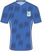Cardiff City FC shirt