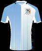 Coventry City Football Club shirt