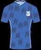 Cardiff City FC shirt