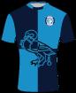 Wycombe Wanderers shirt